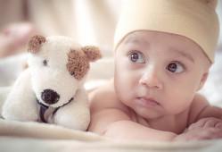 婴儿喝羊奶粉好还是牛奶粉好?