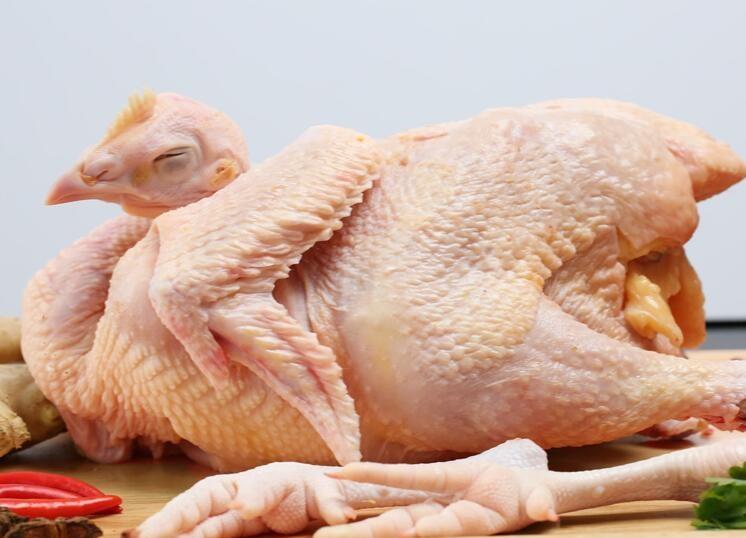 鸡的哪些部位不能吃?