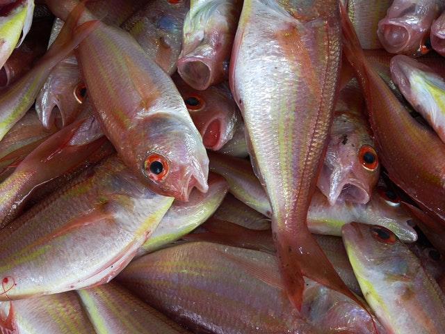 鱼刺卡喉咙,喝醋、吞馒头管用吗?
